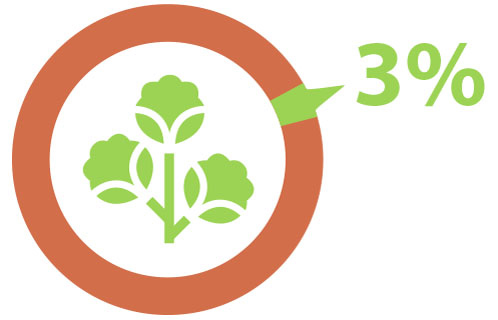 3% surface cultivée pour le coton
